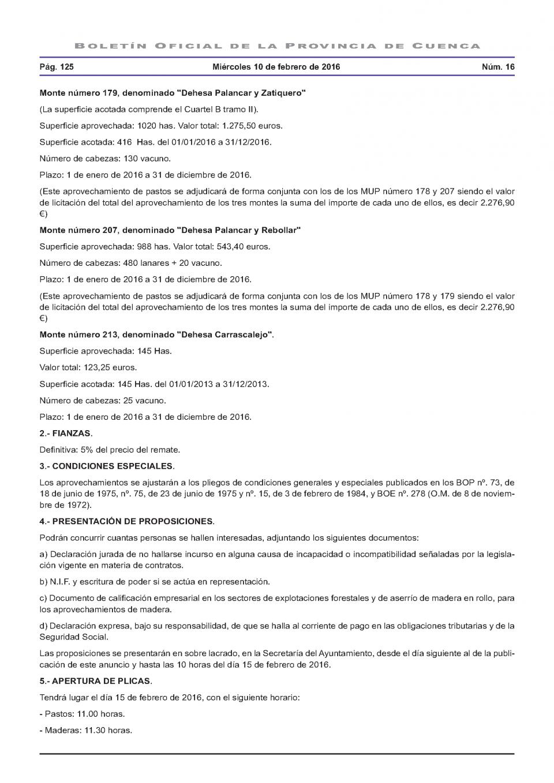 Licitación de subastas_Página_2